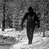 Drone in cautarea lui Bigfoot