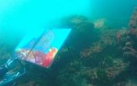 Video: Artist picteaza sub apa
