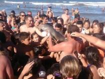 Un pui de delfin a murit dupa ce zeci de turisti au facut selfie cu el