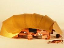 A fost construit un robot inspirat de gandacii de bucatarie pentru a depista victimele prinse sub daramaturi