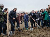 """Participarea premierului Sorin Grindeanu la acțiunea de plantare – """"Creștem împreună"""" – deschiderea oficială a lunii plantării arborilor 2017"""