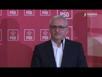 Dragnea, despre numirea lui Laufer ca ministru: M-am abţinut la vot, dar are toată susţinerea mea